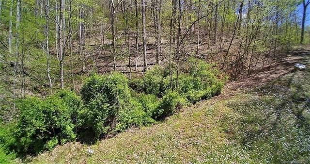 2 Conleys Creek Road, Whittier, NC 28789 (#3618066) :: High Performance Real Estate Advisors