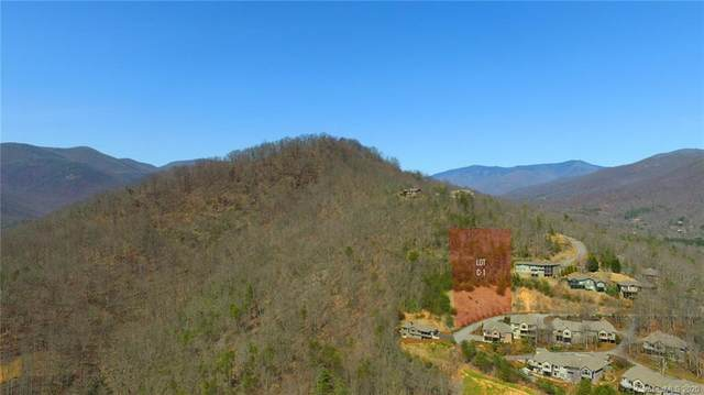 99999 Red Plum Lane, Black Mountain, NC 28711 (#3619101) :: Cloninger Properties