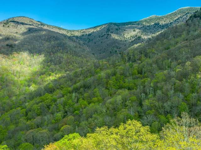 00 Ogles Gap Road, Burnsville, NC 28714 (#3619242) :: The Premier Team at RE/MAX Executive Realty