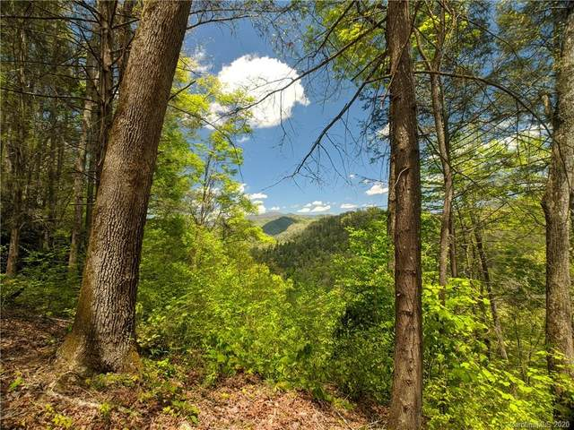Lot 90 Bear River Lodge Trail #90, Marshall, NC 28753 (#3620691) :: Carlyle Properties