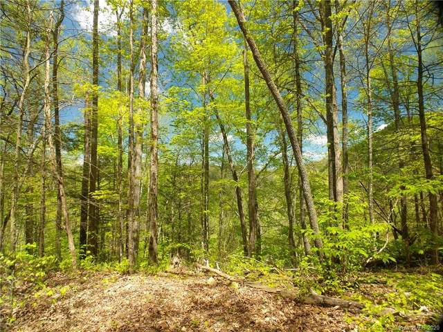 Lot 91 Bear River Lodge Trail #91, Marshall, NC 28753 (#3620716) :: Carlyle Properties