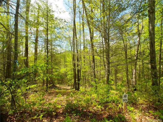 Lot 95 Bear River Lodge Trail #95, Marshall, NC 28753 (#3620727) :: Carlyle Properties
