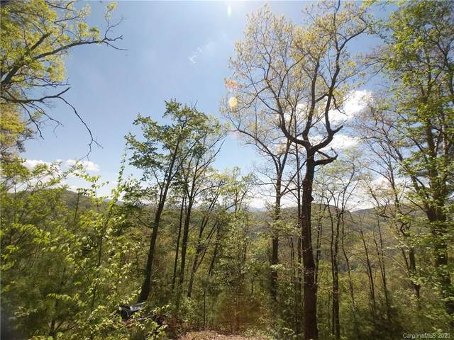 Lot 118 Bear River Lodge Trail #118, Marshall, NC 28753 (#3620738) :: Carlyle Properties