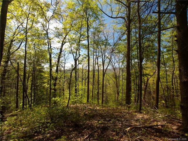 Lot 129 Saddle Top Lane #129, Marshall, NC 28753 (#3620744) :: Carlyle Properties