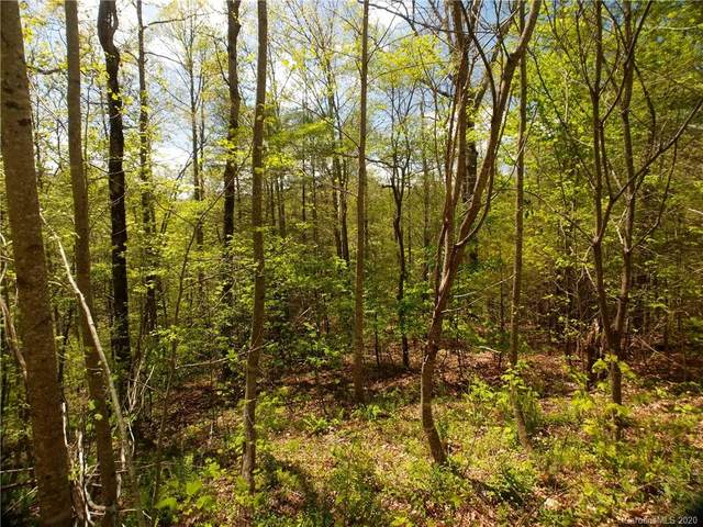Lot 101 Bear River Lodge Trail #101, Marshall, NC 28753 (#3620754) :: Carlyle Properties