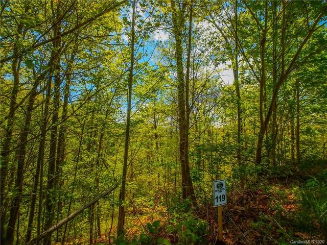 Lot 119 Bear River Lodge Trail #119, Marshall, NC 28753 (#3620764) :: Carlyle Properties