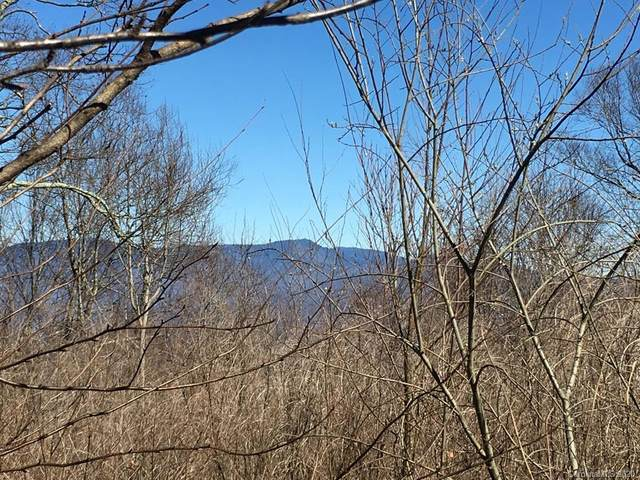 0 Lytle Cove Road Tract F, Swannanoa, NC 28778 (#3620899) :: Mossy Oak Properties Land and Luxury