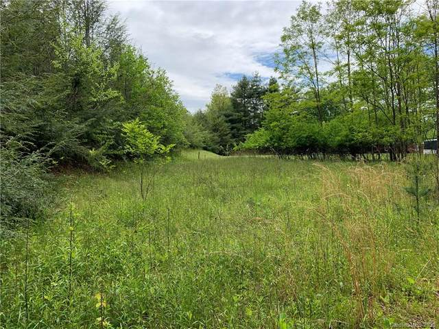 Lot 101 Eagle Lake Drive #101, Brevard, NC 28712 (#3620911) :: IDEAL Realty