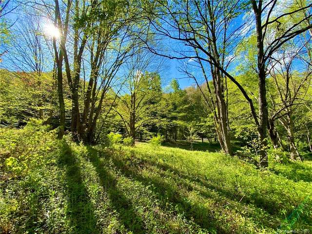 TBD Big Laurel Road B7, Waynesville, NC 28785 (#3620991) :: Mossy Oak Properties Land and Luxury