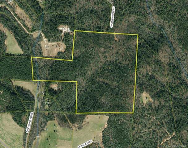 5130 Coleman Ridge Road, Morganton, NC 28655 (#3621219) :: Scarlett Property Group