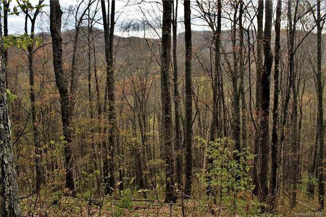 0 Conley Mountain Association Road, Whittier, NC 28789 (#3621448) :: High Performance Real Estate Advisors