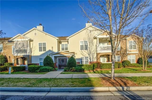 16616 Amberside Road E, Cornelius, NC 28031 (#3621635) :: Cloninger Properties