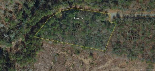 0 Flint Rock Trace #12, Cedar Mountain, NC 28718 (#3622335) :: Ann Rudd Group