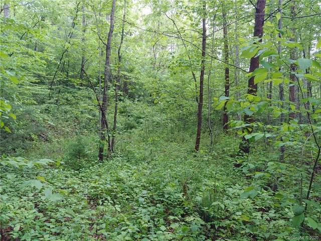 Lot 30 Birch Tree Cove Lot 30, Franklin, NC 28734 (#3622450) :: Premier Realty NC