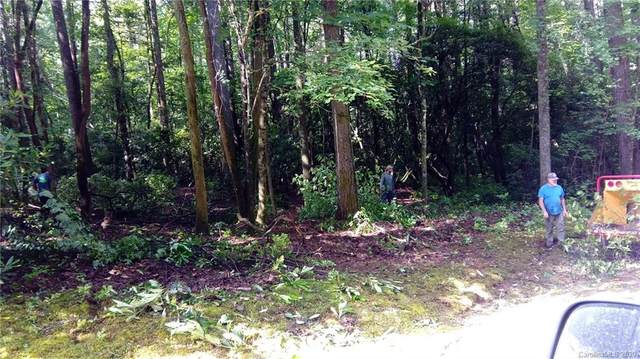 9 A Hawk Mountain Road, Lake Toxaway, NC 28747 (#3622559) :: Puma & Associates Realty Inc.
