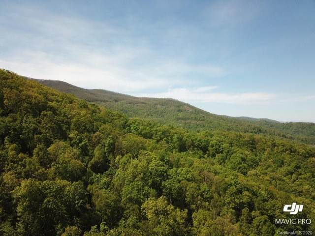 99999 Lytle Cove Road, Swannanoa, NC 28778 (#3622652) :: Cloninger Properties