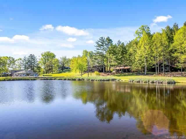 163 Riversedge Road, Brevard, NC 28712 (#3622690) :: Exit Realty Vistas