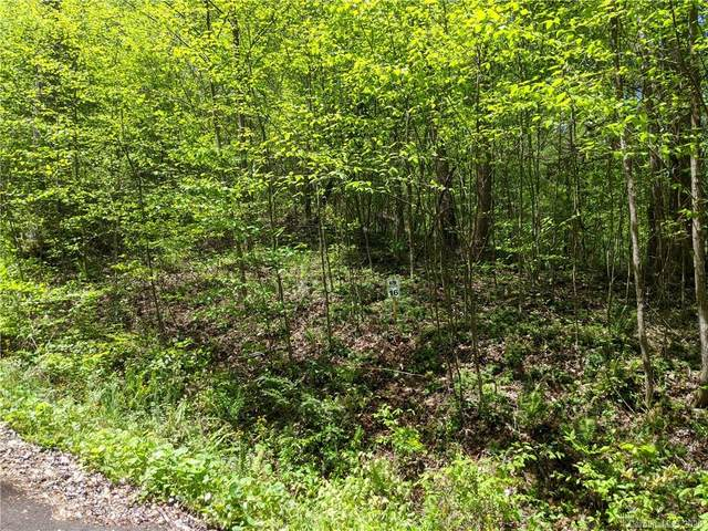 Lot 16 Bear River Lodge Trail #16, Marshall, NC 28753 (#3622996) :: MOVE Asheville Realty
