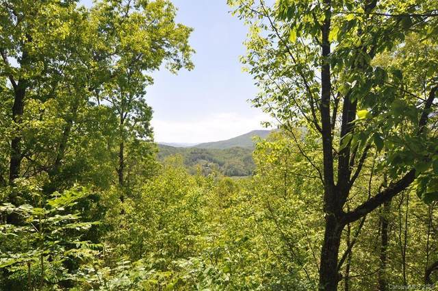 396 Bachman Avenue, Bryson City, NC 28713 (#3623600) :: Stephen Cooley Real Estate Group