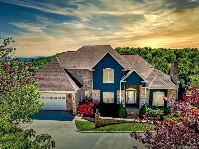 160 Mills Place, Asheville, NC 28804 (#3624623) :: The Elite Group