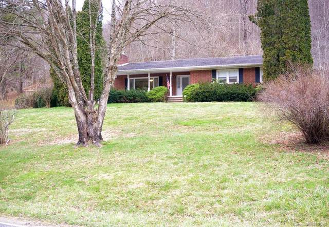 3691 Max Patch Road, Clyde, NC 28721 (#3624766) :: Scarlett Property Group