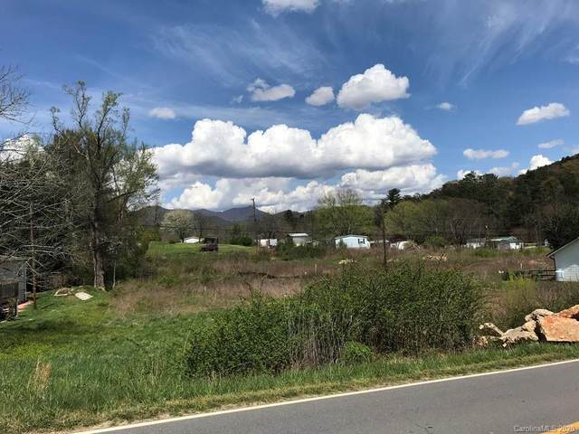 99999 Upper Grassy Branch Road #1, Asheville, NC 28805 (#3624875) :: MartinGroup Properties