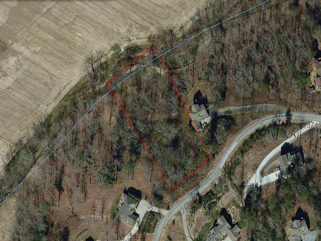 90 Overlook Point Road, Hendersonville, NC 28792 (#3624988) :: Homes Charlotte