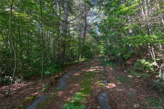 9999 Parkway View Drive, Hendersonville, NC 28739 (#3625186) :: Caulder Realty and Land Co.