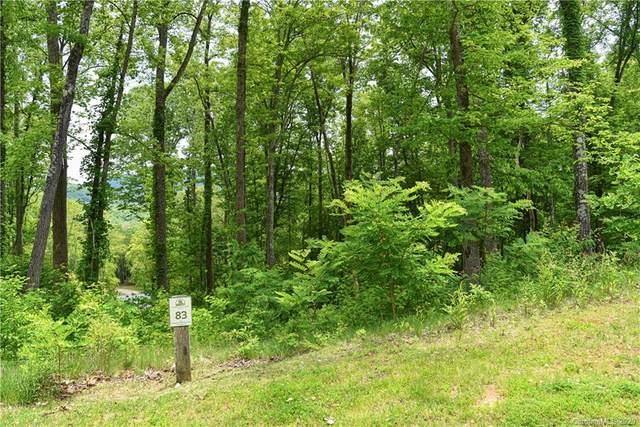 148 Wandering Oaks Way, Asheville, NC 28805 (#3625871) :: Caulder Realty and Land Co.