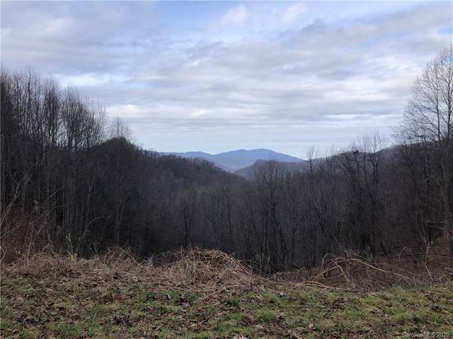9999 Mountain View Road, Hot Springs, NC 28743 (#3626190) :: MOVE Asheville Realty