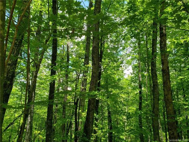Lot 10 Forest Trail #10, Balsam Grove, NC 28708 (#3627409) :: Homes Charlotte