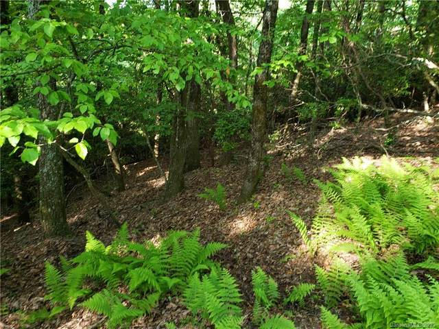 lot 406 Connestee Trail 406/2, Brevard, NC 28712 (#3627742) :: Charlotte Home Experts