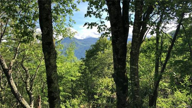 Lot 21/22 Leatherwood Road, Maggie Valley, NC 28751 (#3627907) :: High Performance Real Estate Advisors