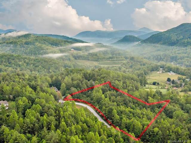 242 Morning Air Lane, Hendersonville, NC 28792 (#3629258) :: Mossy Oak Properties Land and Luxury