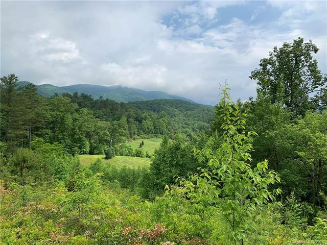 TBD Shoal Creek Road, Balsam Grove, NC 28708 (#3630276) :: LePage Johnson Realty Group, LLC