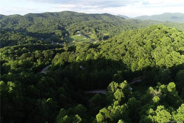 99999 Garrison Road, Fairview, NC 28730 (#3631571) :: Carlyle Properties