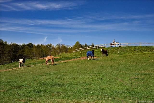 130 Ivy Hill Road, Weaverville, NC 28787 (#3631710) :: Wilkinson ERA Real Estate