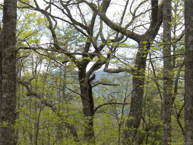 Lot 14 Rock Cave Road #14, Black Mountain, NC 28711 (#3631769) :: LePage Johnson Realty Group, LLC