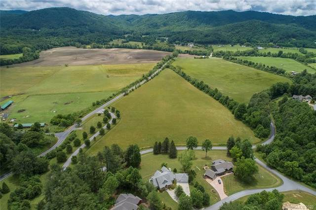 1 Coventry Drive, Brevard, NC 28712 (#3631796) :: High Performance Real Estate Advisors