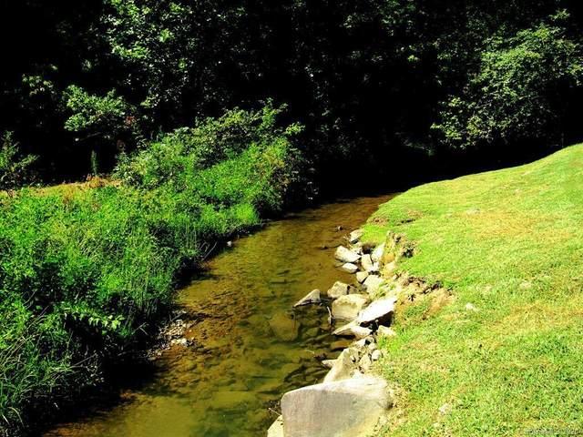 2120 Lower Tuskeegee Road, Robbinsville, NC 28771 (#3632517) :: Rinehart Realty