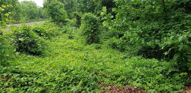 TBD Shannon Drive, Asheville, NC 28803 (#3632706) :: www.debrasellscarolinas.com