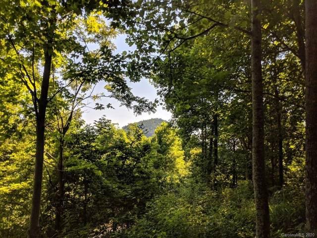 Lot T-46 315 Kalmia Lane T-46, Black Mountain, NC 28711 (#3633234) :: Miller Realty Group