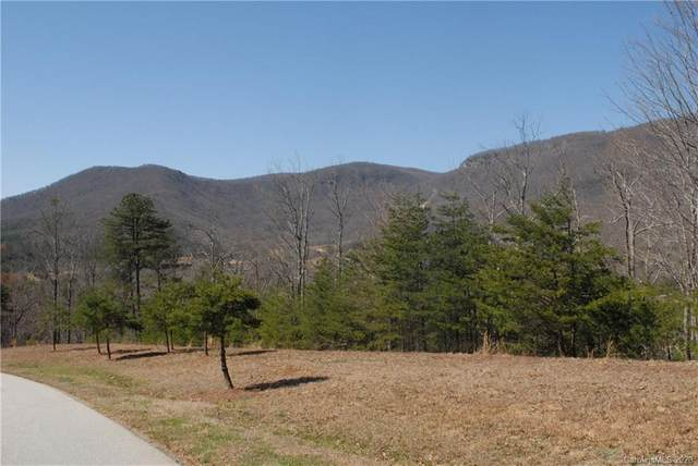 00 Deep Gap Farm Road E #58, Mill Spring, NC 28756 (#3633310) :: Stephen Cooley Real Estate Group
