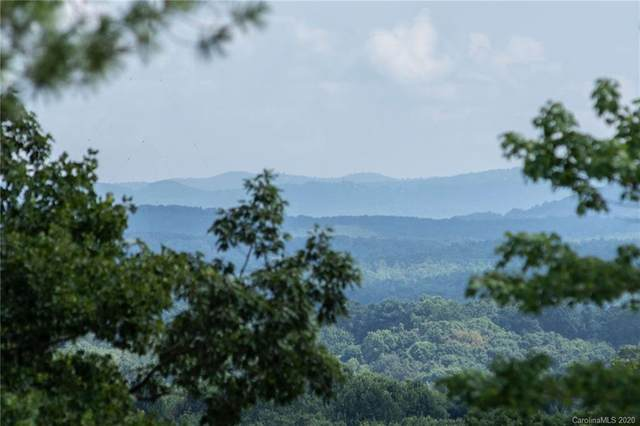 27 Denali Drive V-95, Asheville, NC 28806 (MLS #3633598) :: RE/MAX Journey