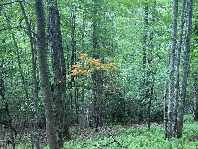 Lot 1 Sassafras Road, Cedar Mountain, NC 28718 (#3633787) :: Johnson Property Group - Keller Williams