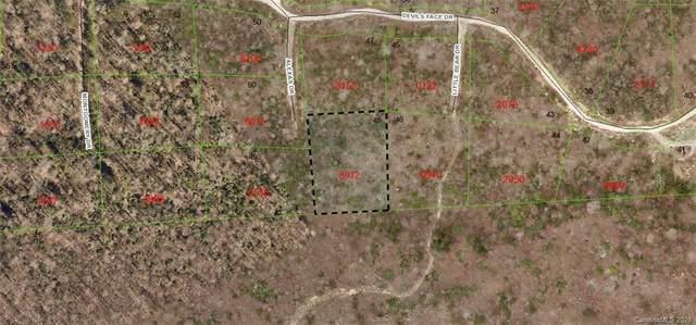 48 Dobsons Knob Loop #48, Marion, NC 28752 (#3633821) :: Odell Realty