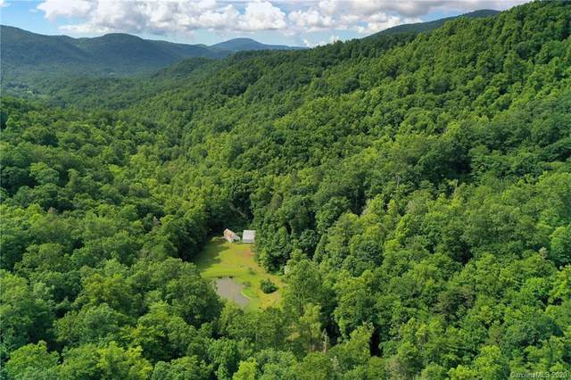 204 Rush Creek Road, Black Mountain, NC 28711 (#3633878) :: Rinehart Realty