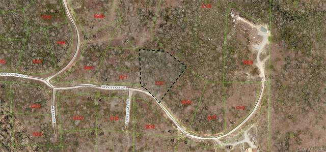 37 Dobsons Knob Loop #37, Marion, NC 28752 (#3633889) :: Odell Realty