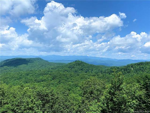 123 Antler Ridge Road, Rosman, NC 28772 (#3633956) :: MartinGroup Properties