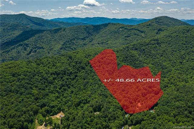 99999 Mundy Cove Road, Weaverville, NC 28787 (#3634535) :: LePage Johnson Realty Group, LLC